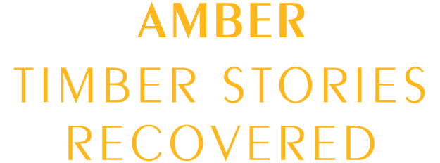 amber timber stories recovered logo 01 - AMBER STORIES